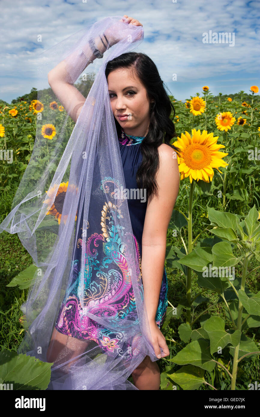 Beautiful dark-haired young woman holding purple tulle and standing in sunflowers Stock Photo