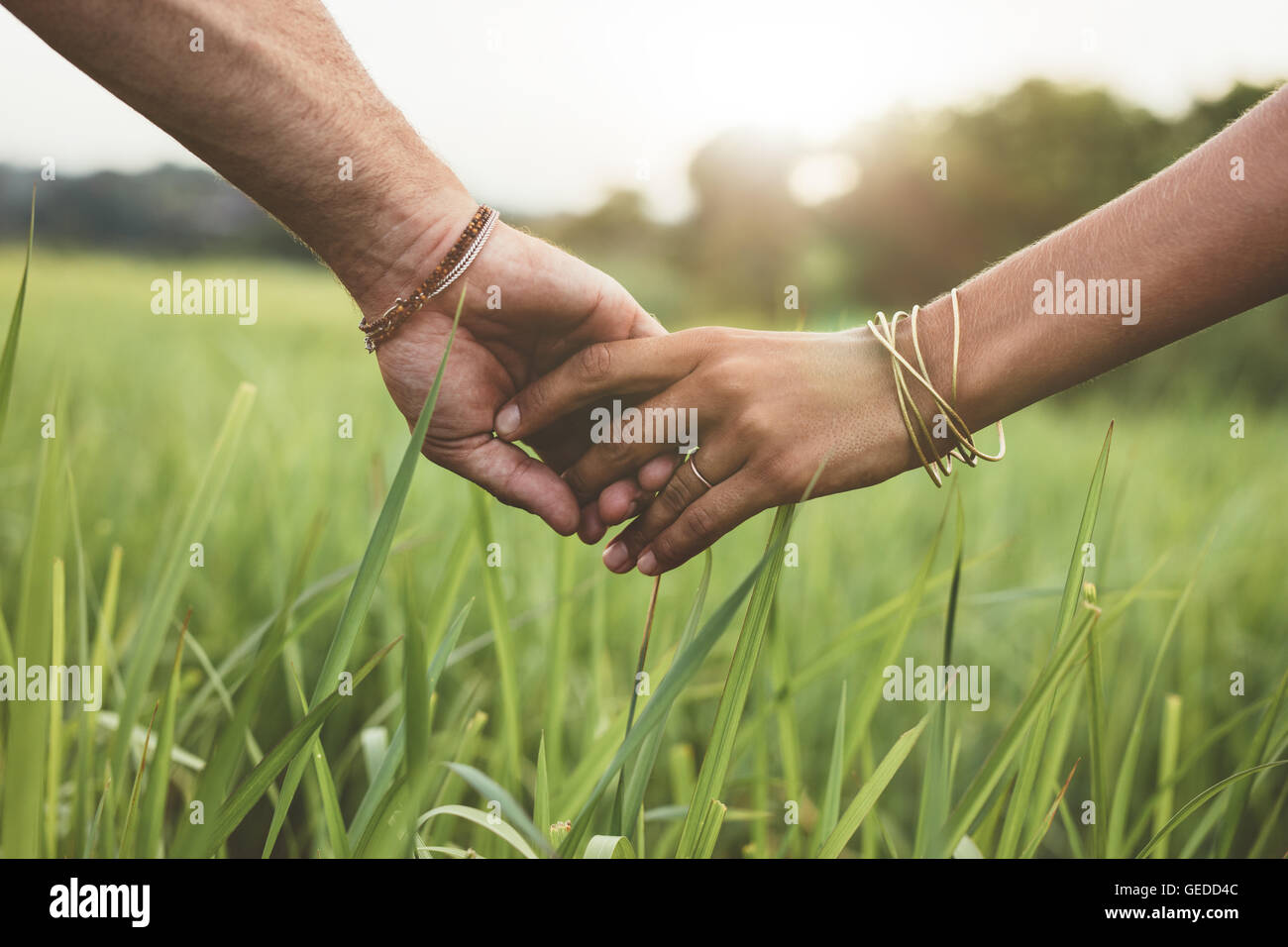 Shot of romantic couple holding hands in a field. Close up shot of man and woman with hand in hand walking through - Stock Image