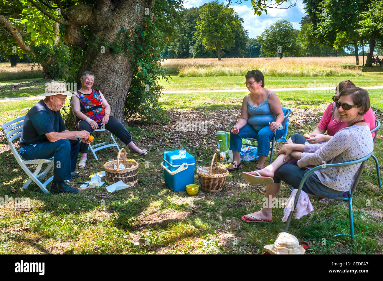 Family picnic under the shade of trees - France Stock Photo - Alamy