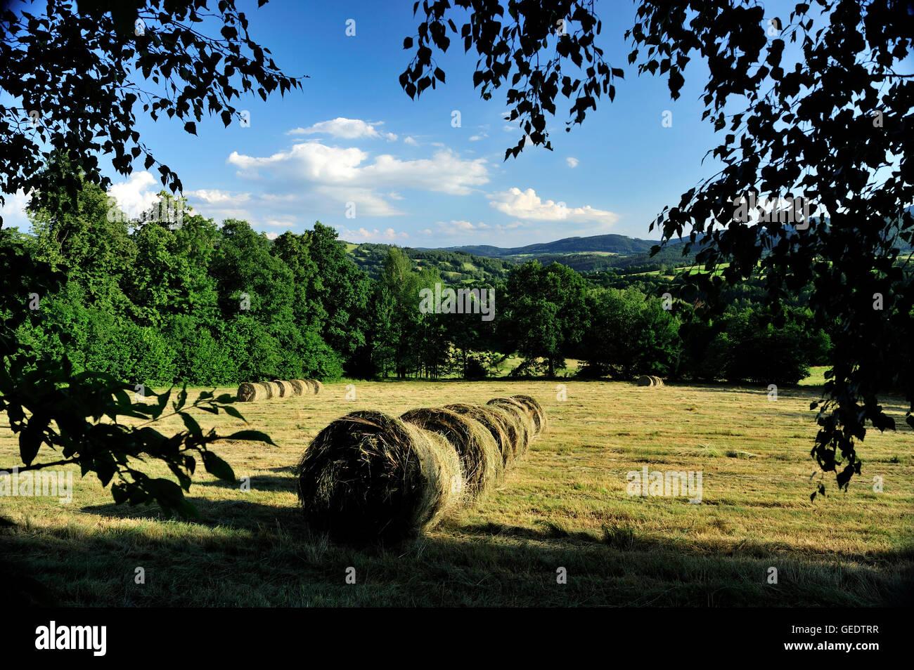 dolnoslaskie, landscape, wielka sowa, zagorze sl, silesia, poland, lower silesia, golden, train, sowie, gory, mountain, - Stock Image