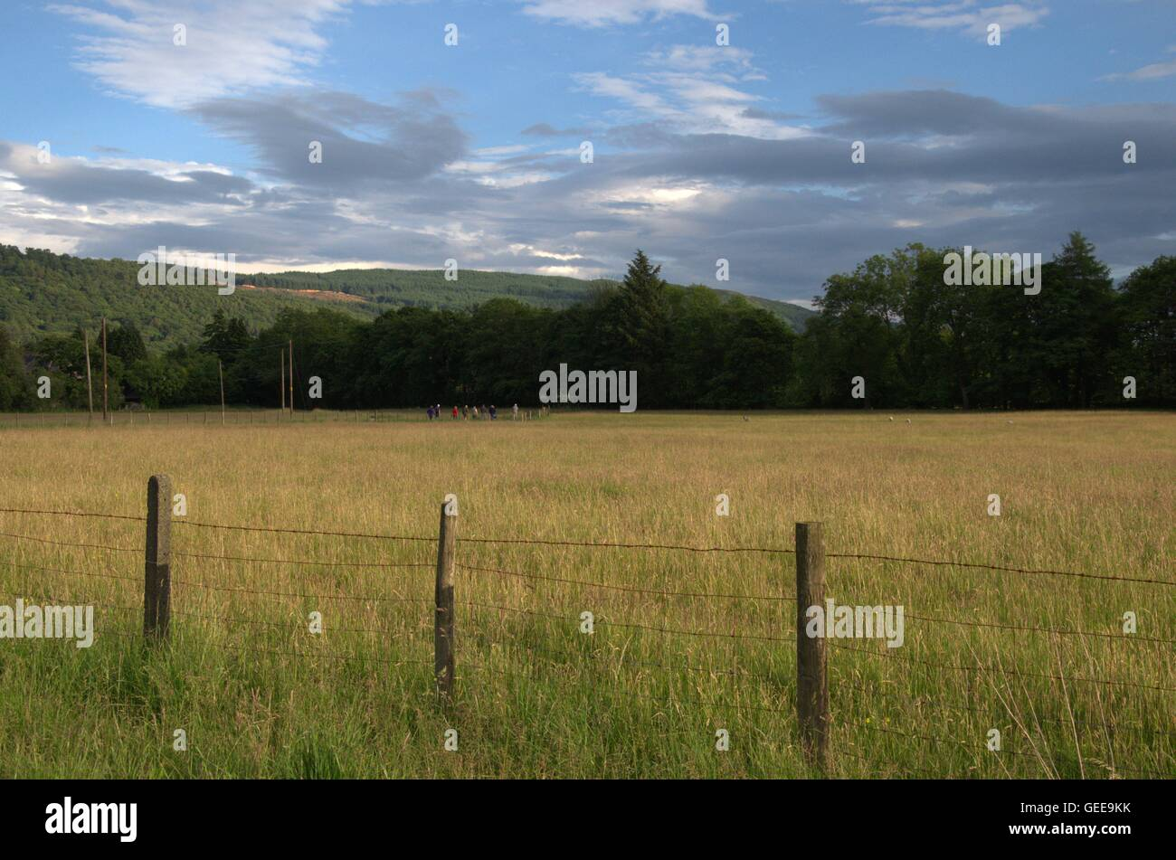 Landscape orientation of family members trudging across country in the distance, moving towards Coniston Water - Stock Image