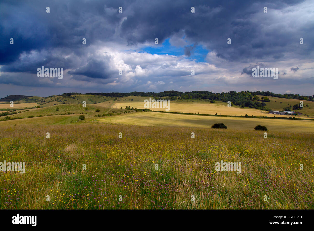 Ivinghoe Beacon in the Chiltern hills Buckinghamshire - Stock Image