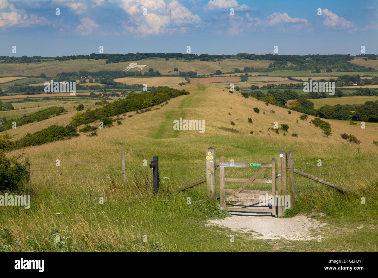 A view from Ivinghoe beacon towards the Whipsnade Lion Buckinghamshire - Stock Image