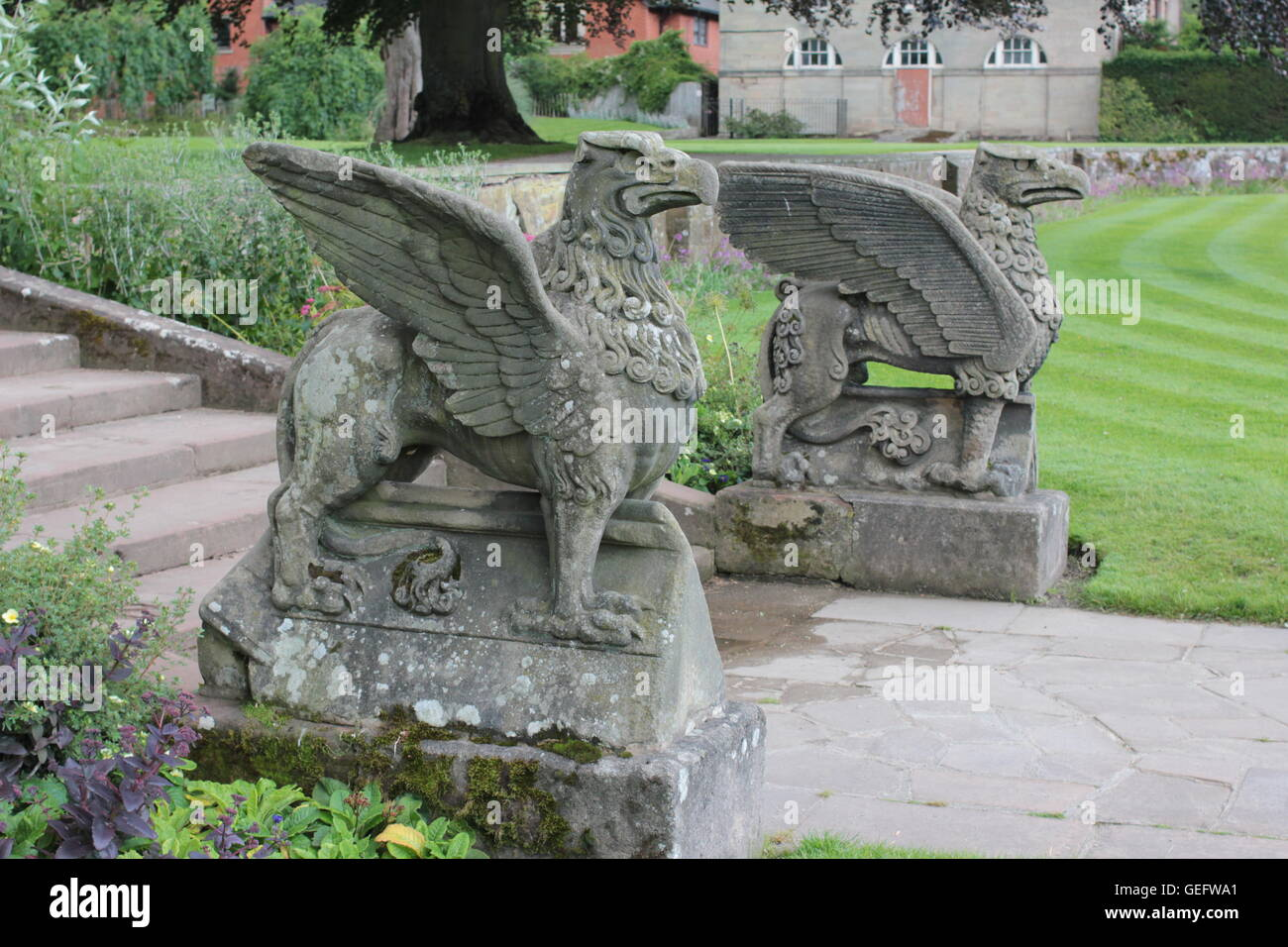 Griffin guarding the stone steps at Coombe Abbey - Stock Image