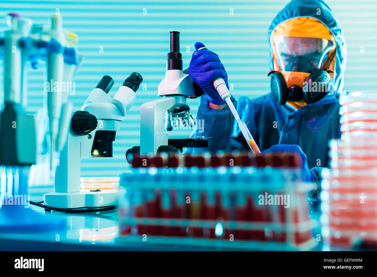 Research dangerous viruses in the laboratory - Stock Image