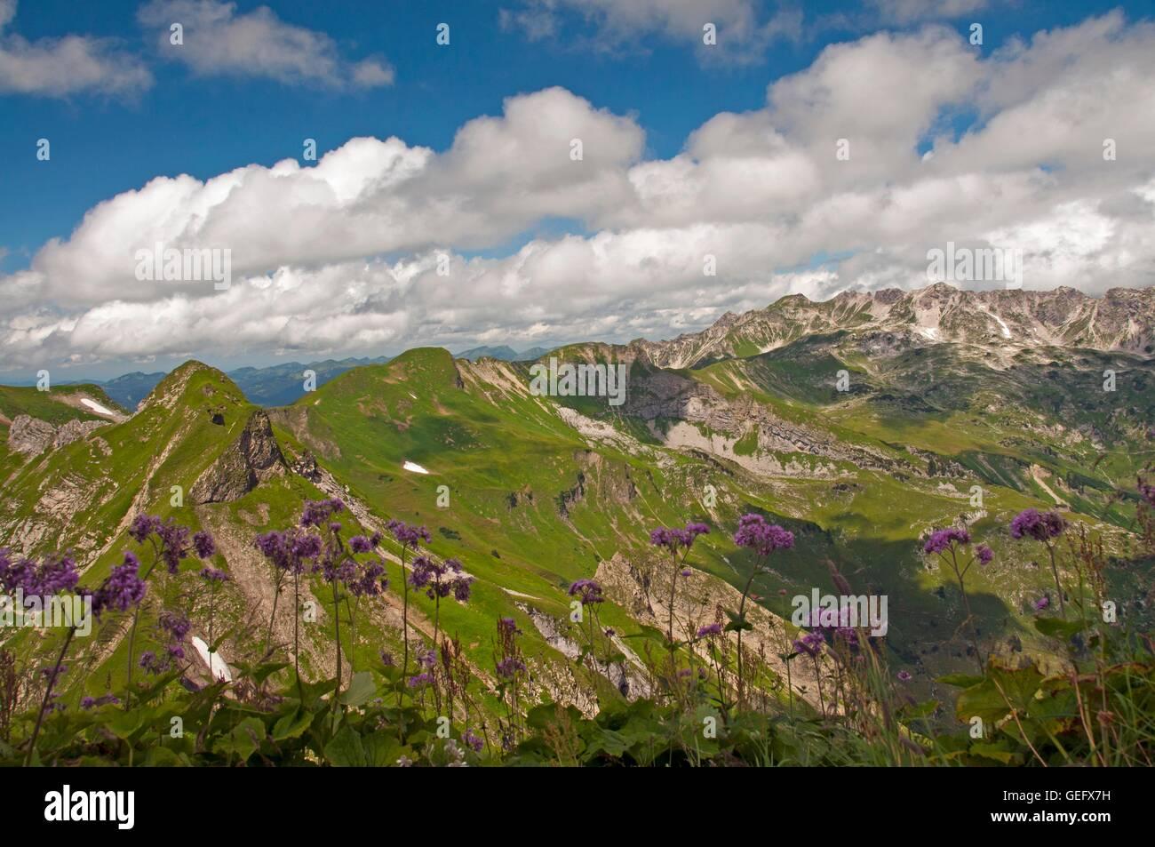 Allgaeu Alps, Bavaria - Stock Image