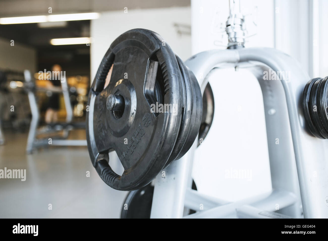 Gym barbell - Stock Image