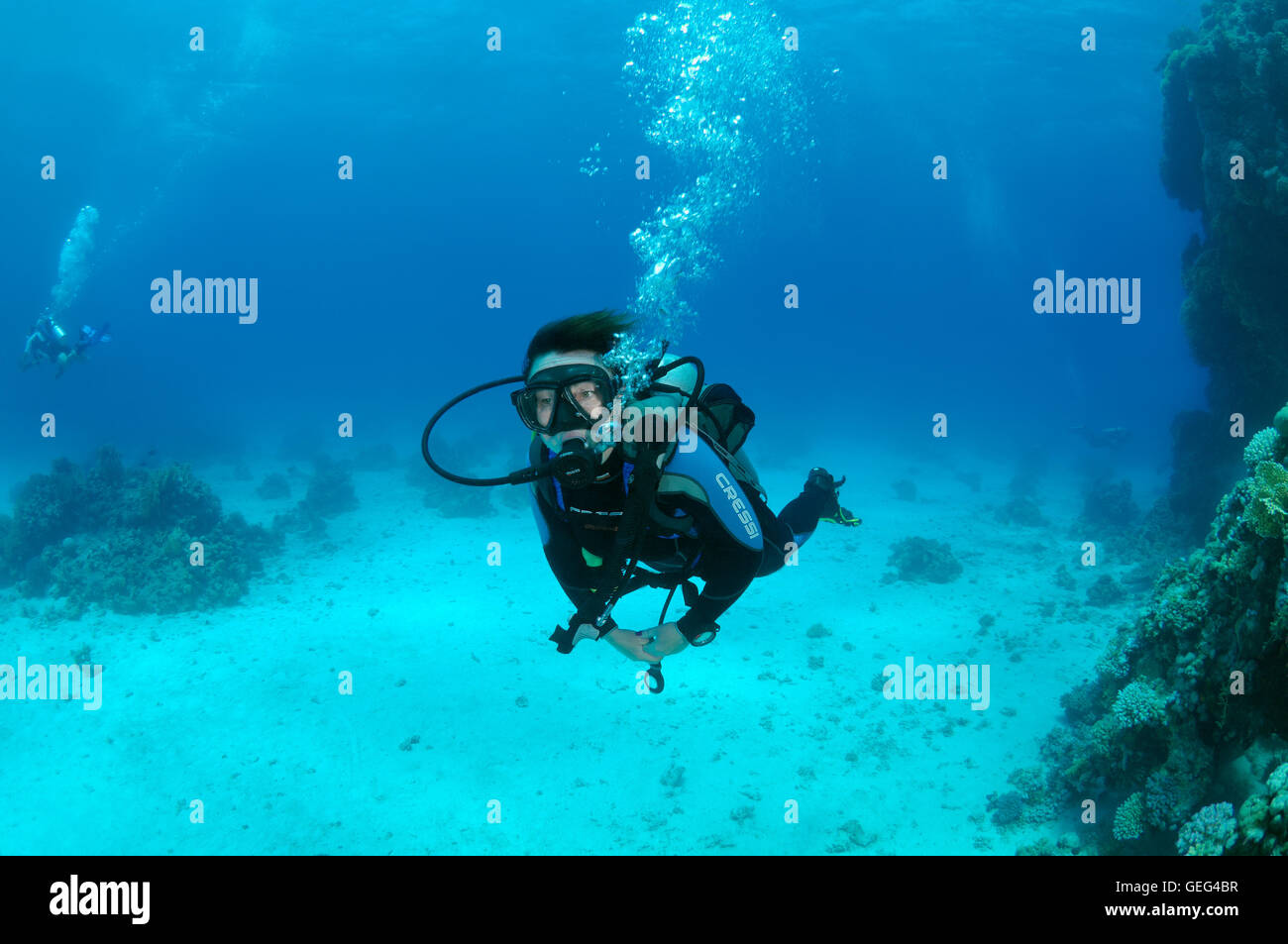 Female scuba diver with a coral reef, Shark Yolanda reef, Ras Mohammed national park, Sinai, Sharm el-Sheikh, Red - Stock Image