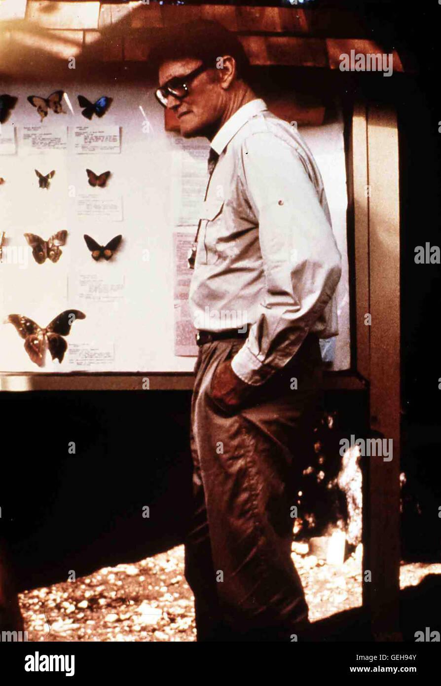 Chuck Conners  Der alte Warren (Chuck Conners) fängt gern Schmetterlinge und führt mit Strenge ein Jugend - Stock Image