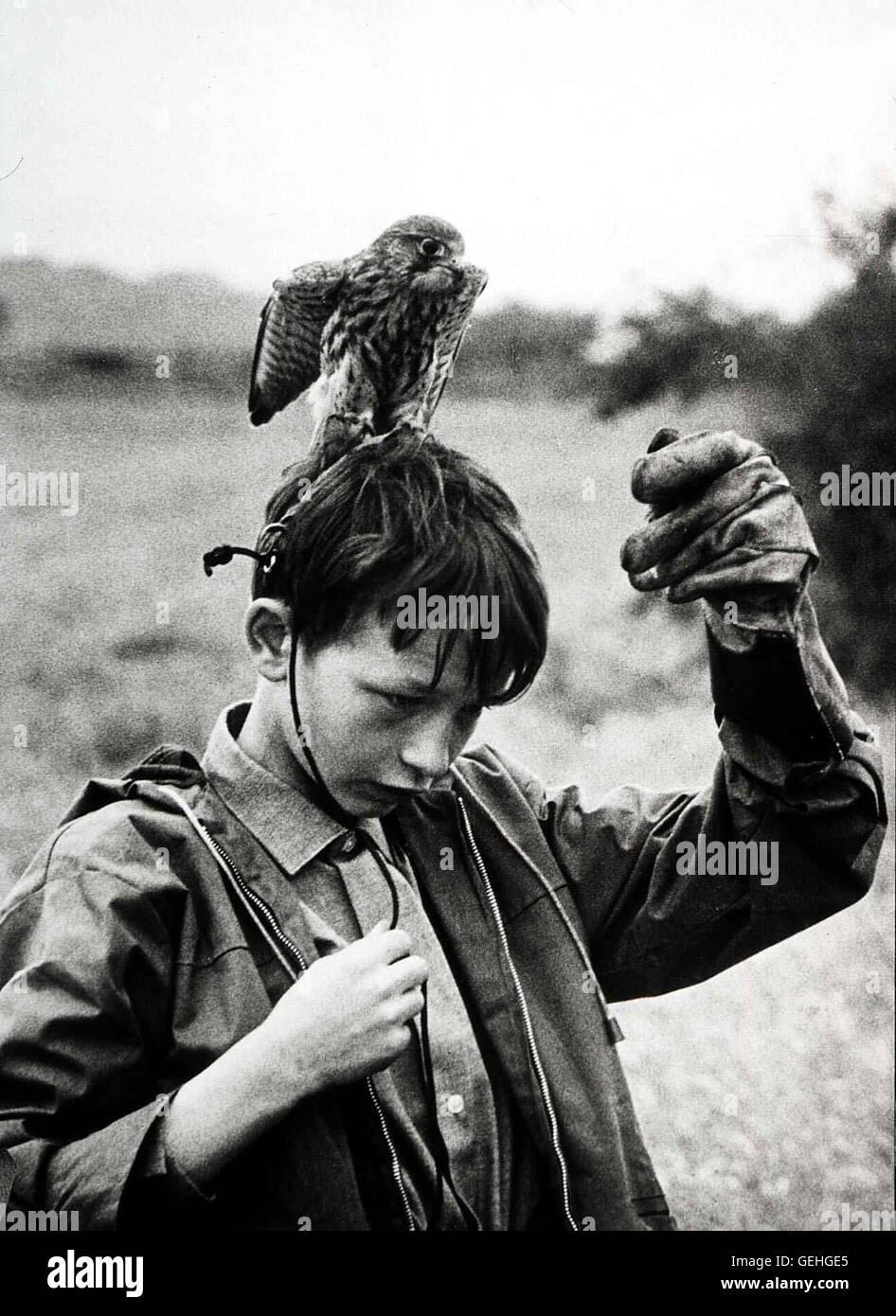 David Bradley   Der 15-jaehrige Billy (David Bradley) waechst in den tristen Verhaeltnissen einer nordenglischen Stock Photo