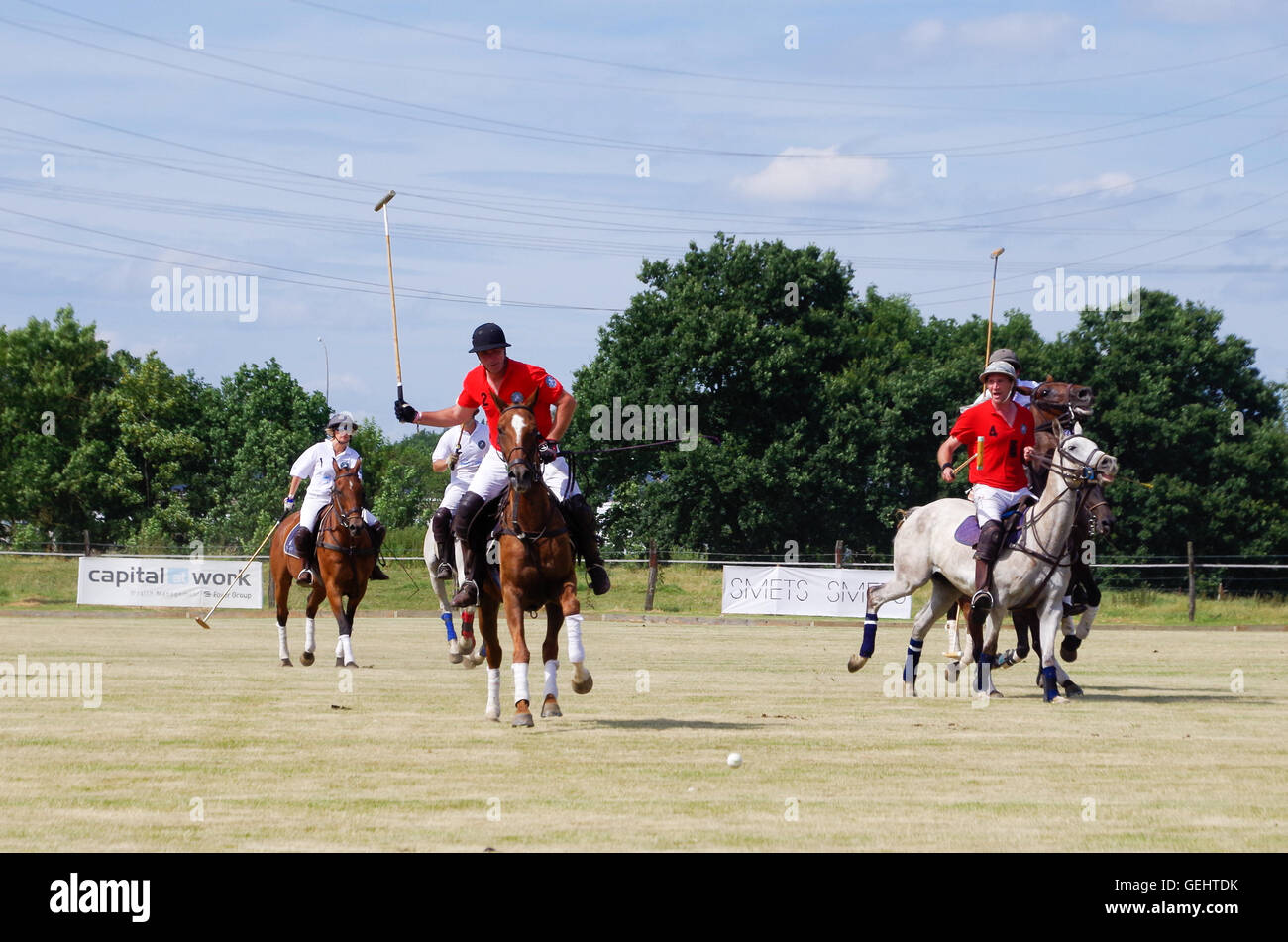 Polo players galloping towards the ball during a tournament in Luxembourg, 2016 - Stock Image