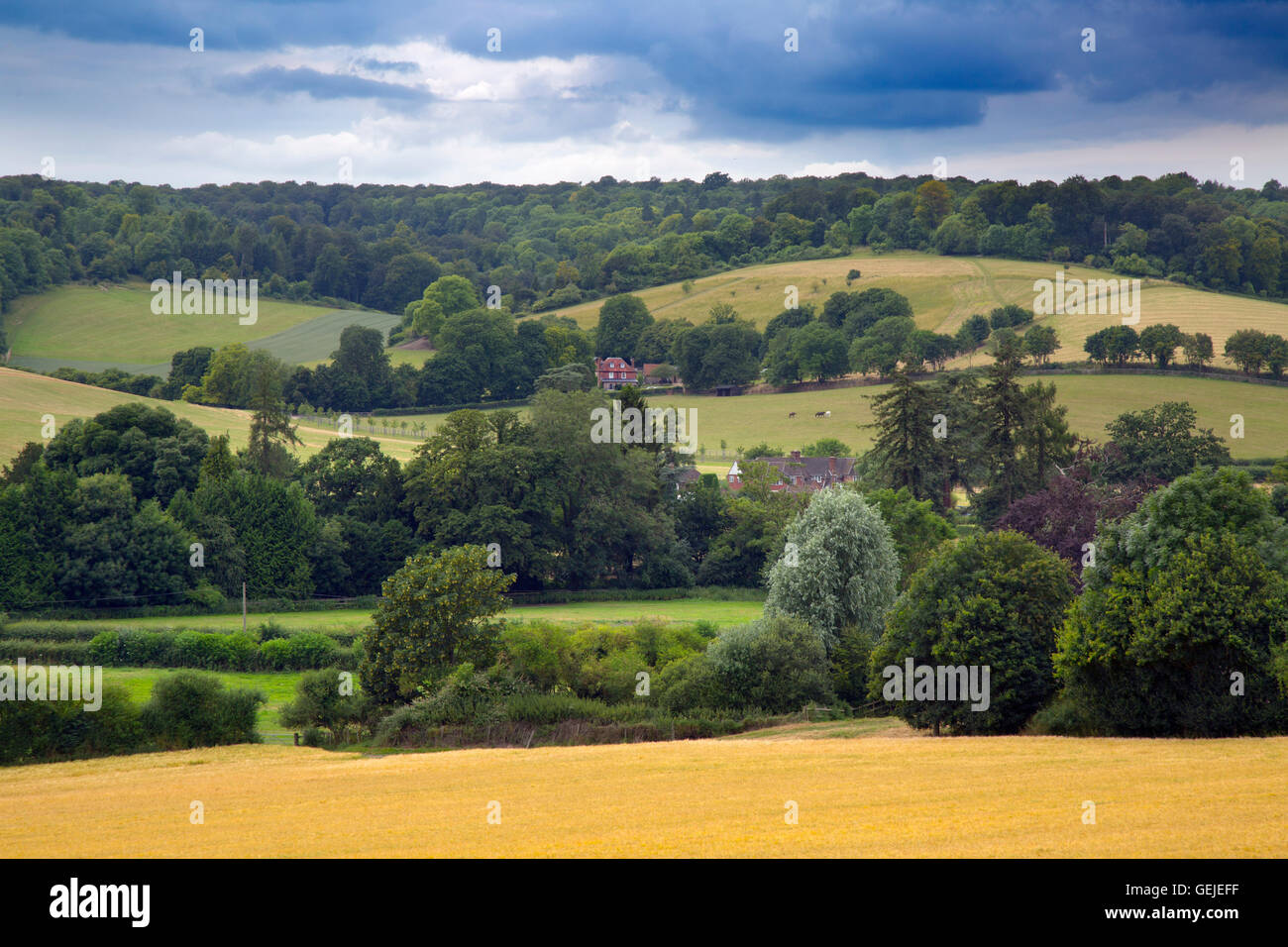 Hambleden Valley Buckinghamshire - Stock Image