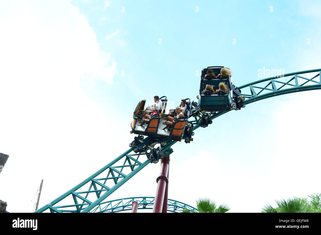 Cobra's Curse spin coaster at Busch Gardens Tampa Florida, the only one of its kind in the world - Stock Image