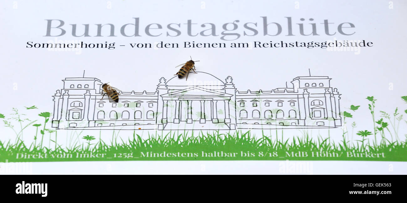 Bees sit on the label of the Bundestag honey in the Paul Loebe Haus in Berlin, Germany, 26 July 2016. The honey - Stock Image