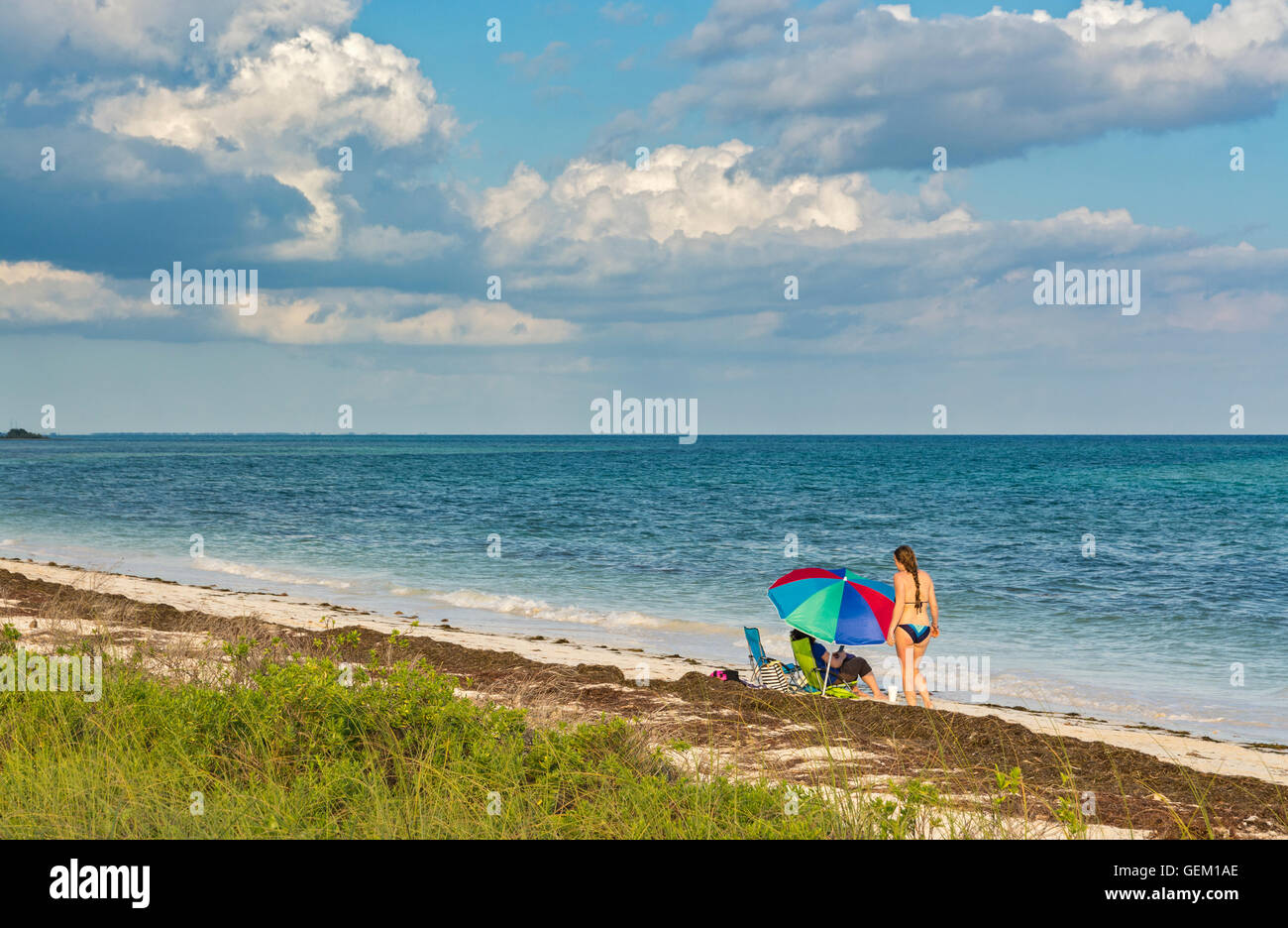 Florida, Bahia Honda State Park, Seagrass on beach, umbrella, woman, bikini - Stock Image