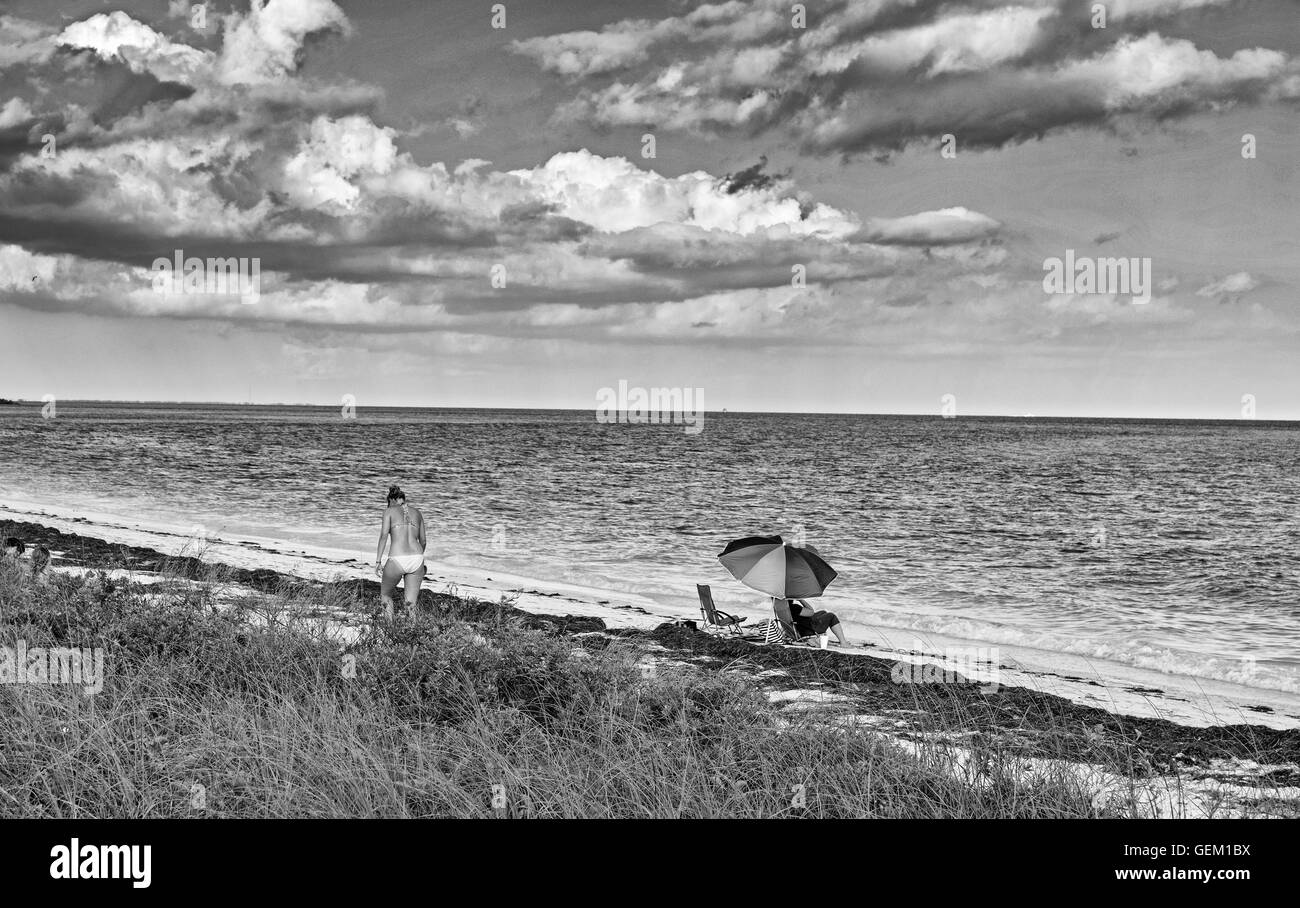 Florida, Bahia Honda State Park, Seagrass on beach, umbrella, woman, bikini, monochrome - Stock Image