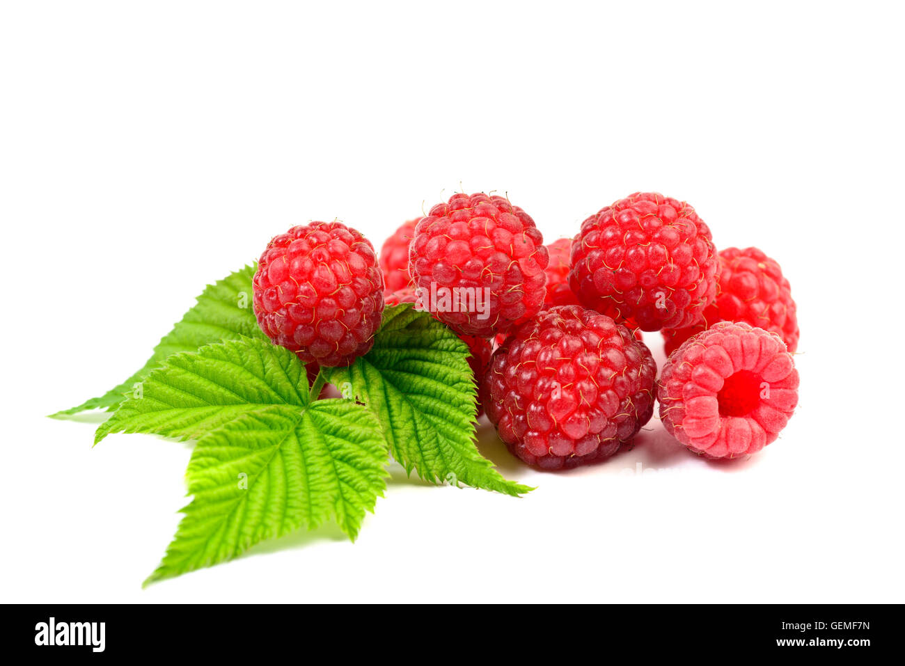 Ripe raspberry with leaf on white background - Stock Image