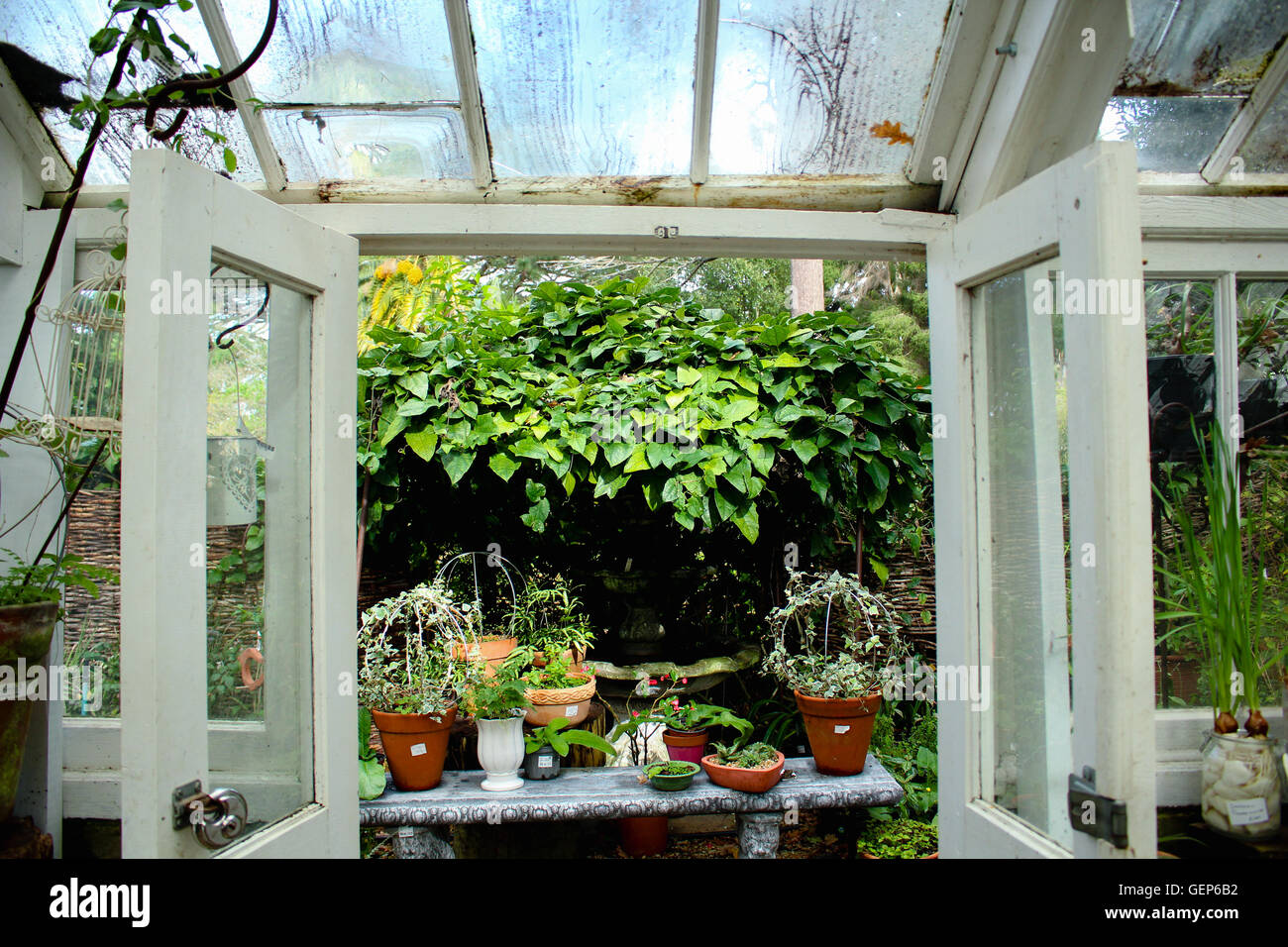 From the inside of the greenhouse, looking out. - Stock Image