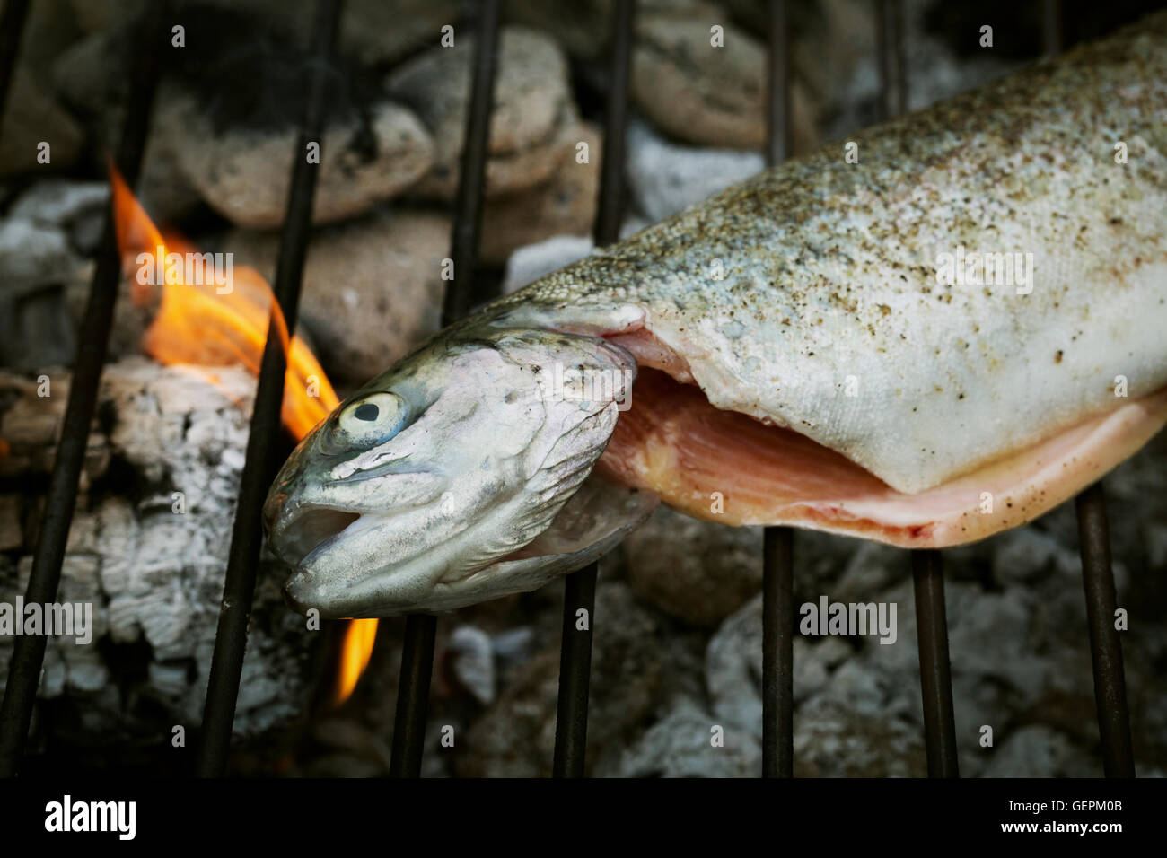 High angle view of a grilled fish on a barbecue. - Stock Image