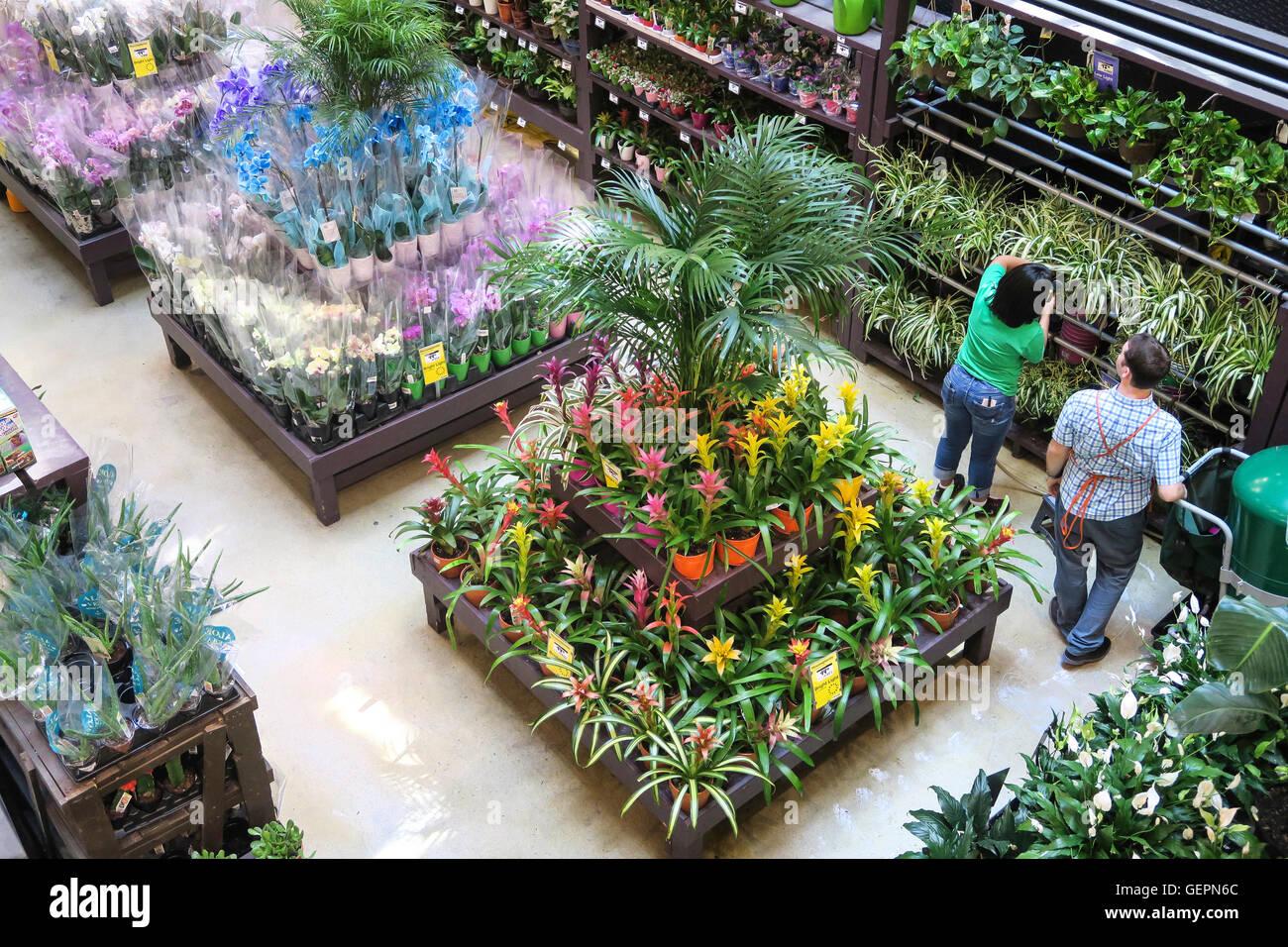 Etonnant Home Depot Store Garden Center Display, NYC
