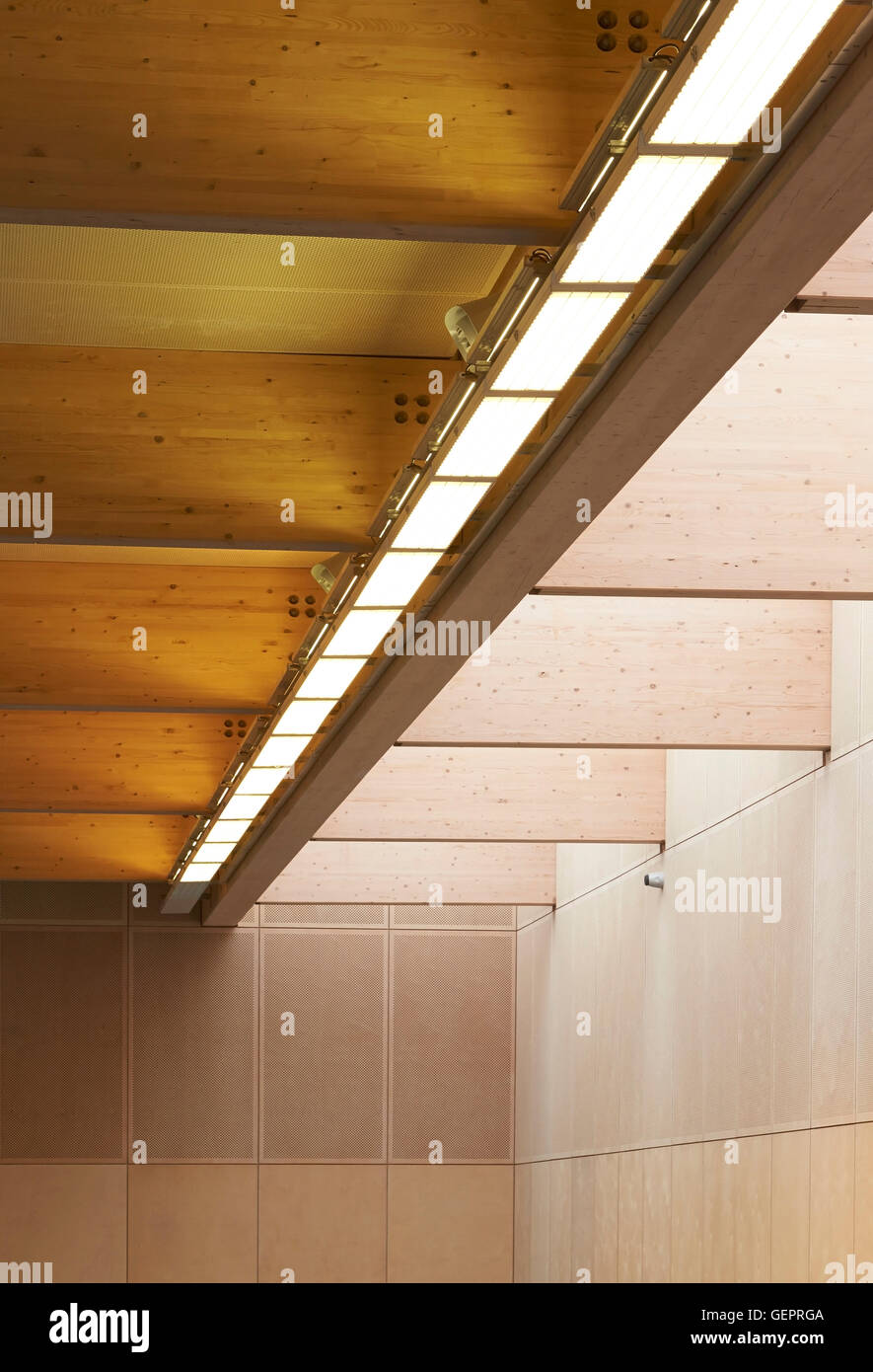 Detail of timber ceiling in sportshall. Eton Manor - Lee Valley ...