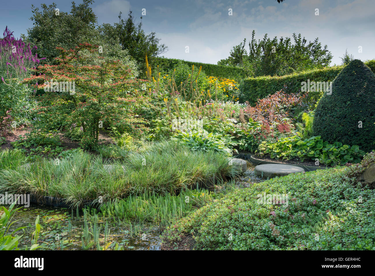 English Garden With Wild Flowers And Big Stones At Small Pond   Stock Image