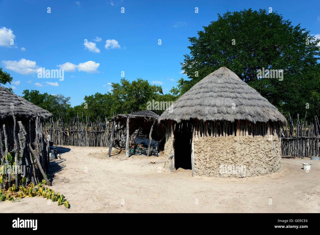 Housing area, Shorobe, Maun, North-West District, Botswana - Stock Image