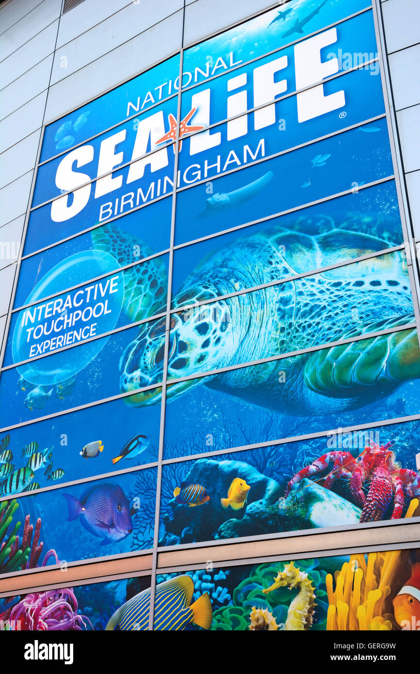 Sign on the wall of the National Sea Life Centre, Birmingham, England, UK, Western Europe. - Stock Image