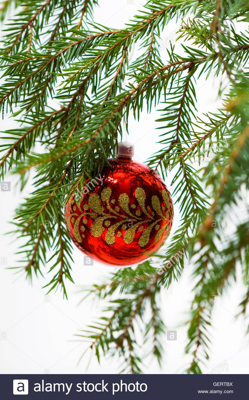 Christmas Tree Branches And Red Decoration Ball With Golden Pattern