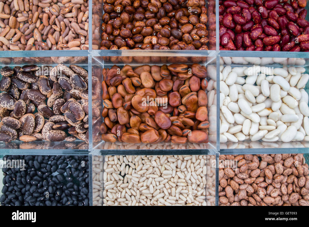 Display of beans at the The Royal Horticultural Society show in Cardiff, 17th April 2016. - Stock Image