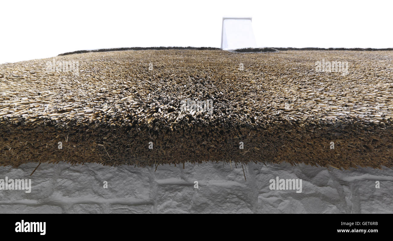Thatch Roof - Stock Image