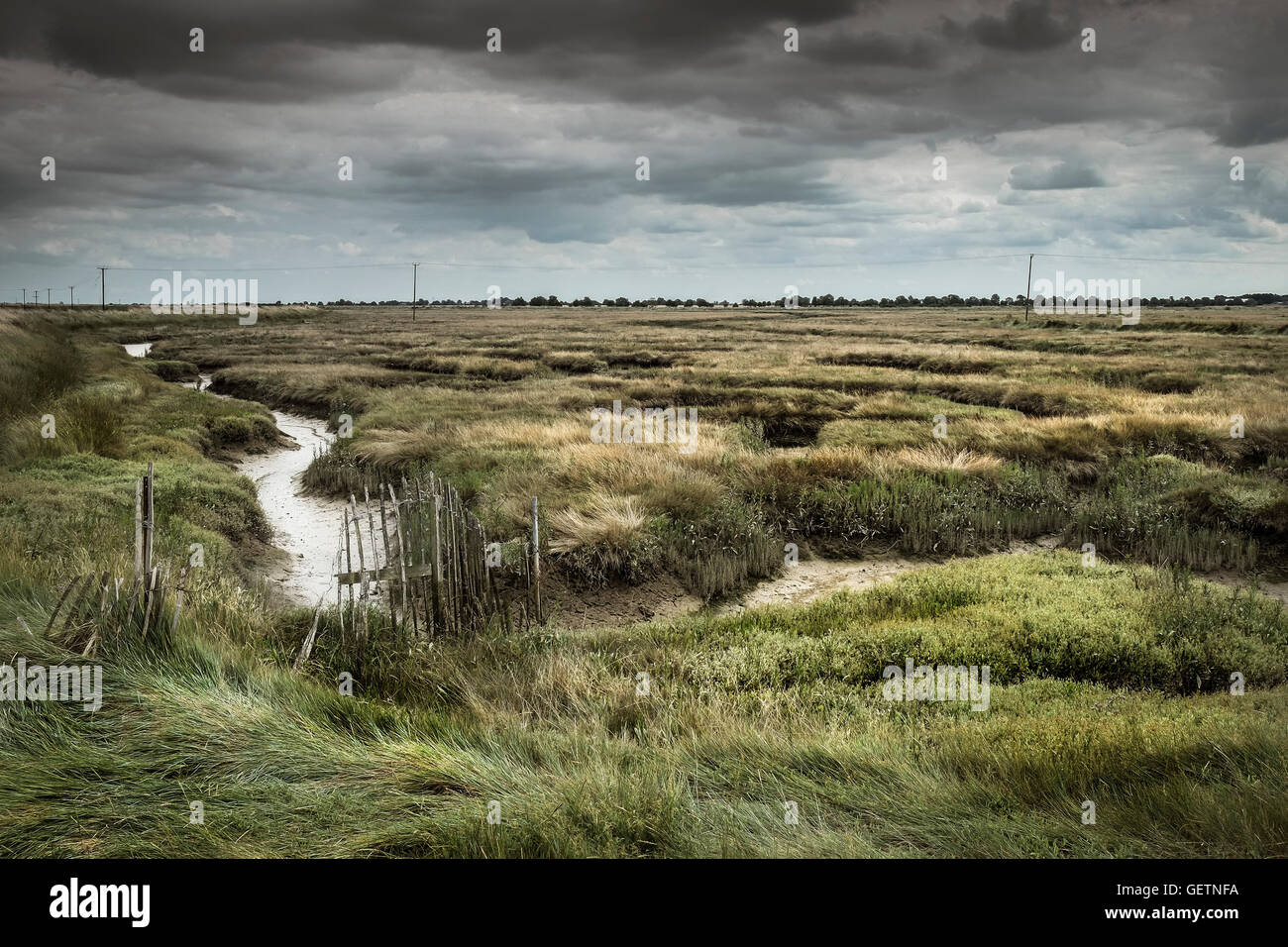 The saltings at Wallasea Island in Essex. Stock Photo