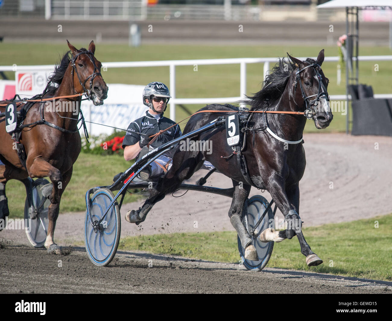 Harness racing driver Mattias Djuse at the summer meeting at Axevalla harness racing track - Stock Image