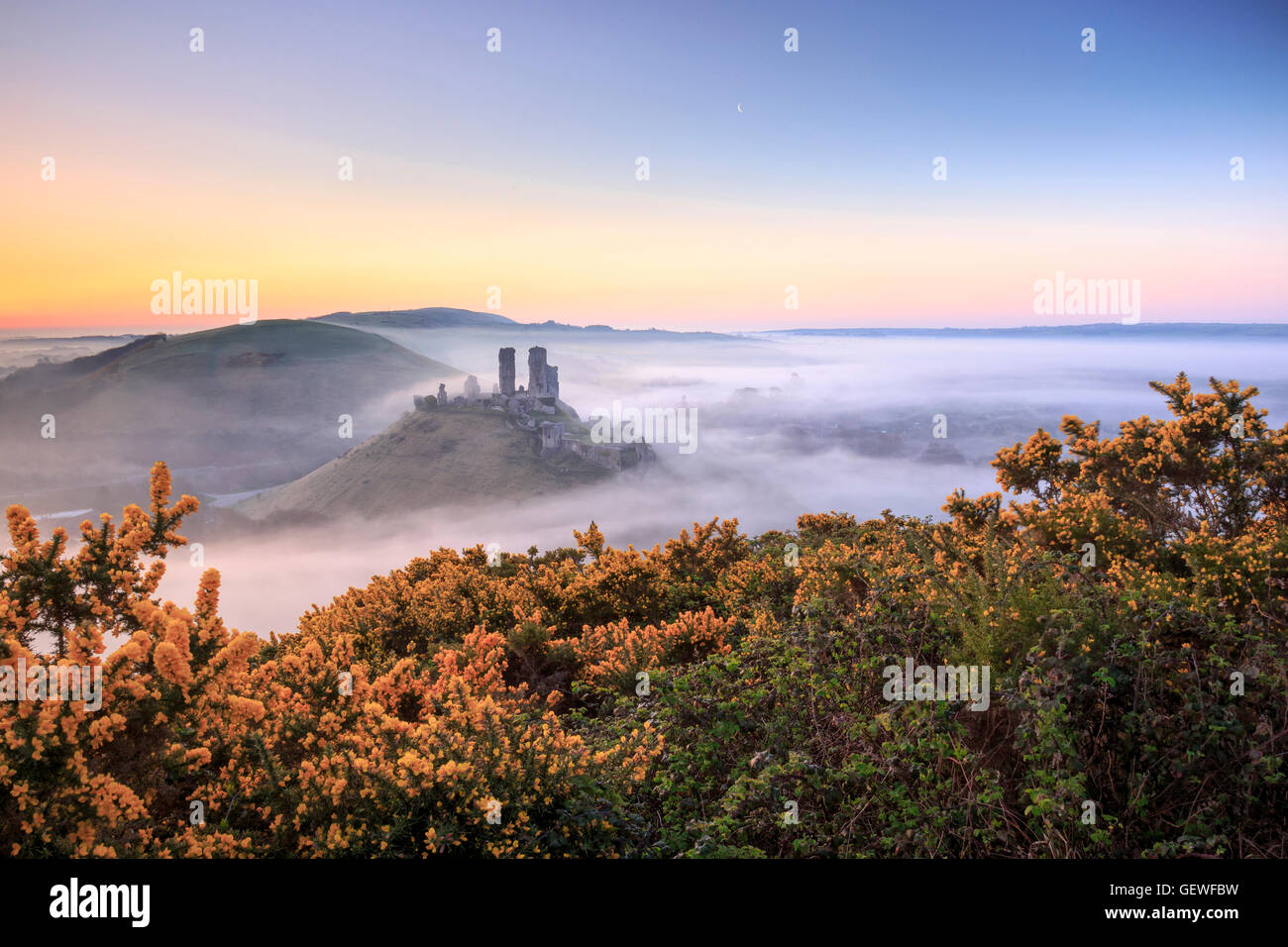 A misty morning at Corfe Castle. Stock Photo