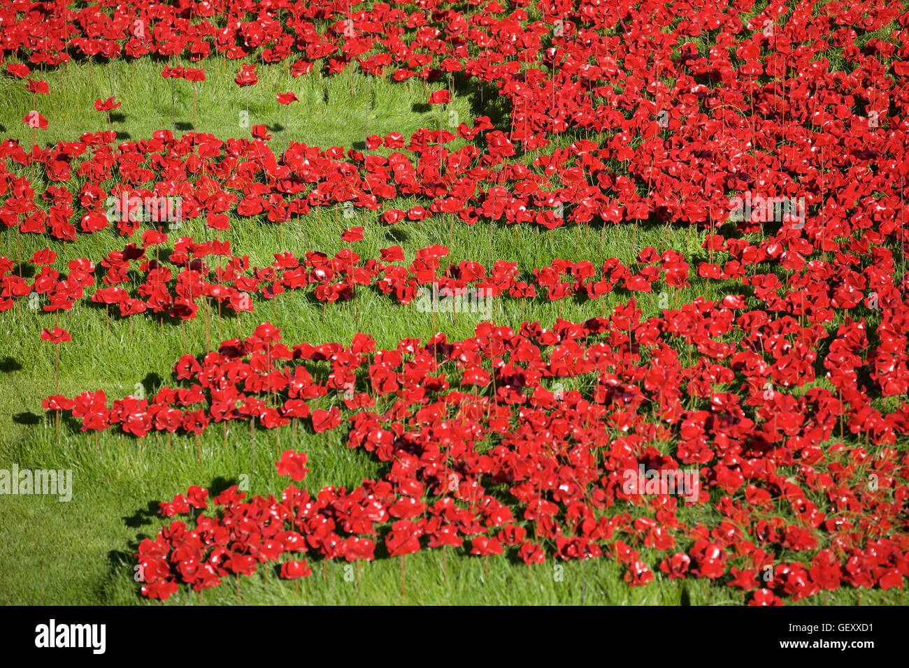 Blood Swept Lands and Seas of Red installation at the Tower of London marking 100 years since the 1st World War. Stock Photo