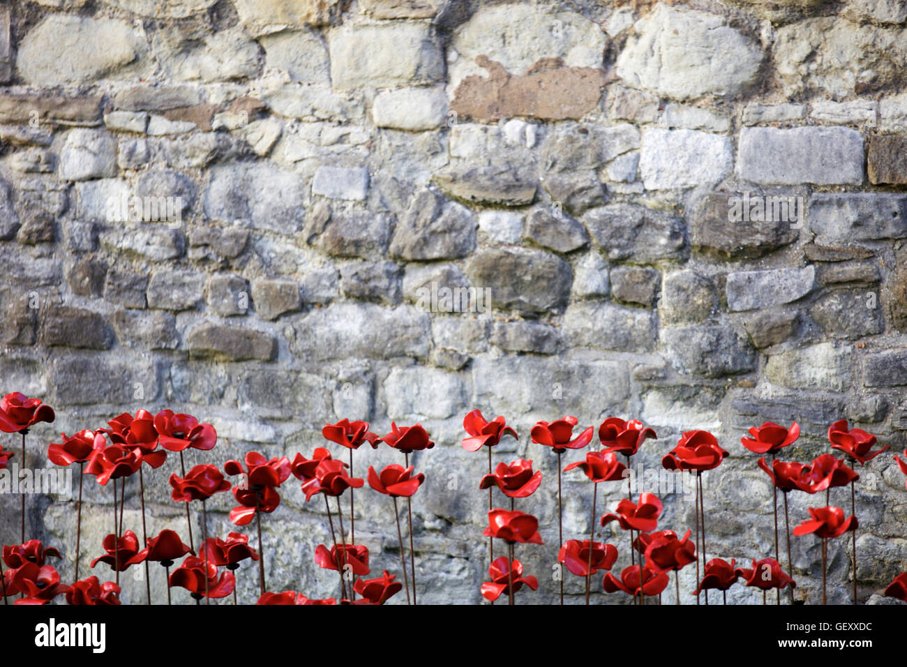 Poppies from Blood Swept Lands and Seas of Red art installation at the Tower of London marking 100 years since the - Stock Image