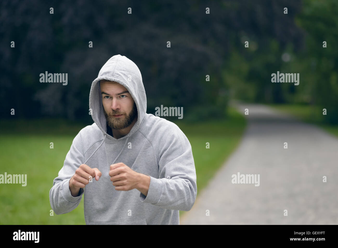 Young bearded man wearing a grey hoodie working out in a park punching air with his fist , close up upper body with - Stock Image