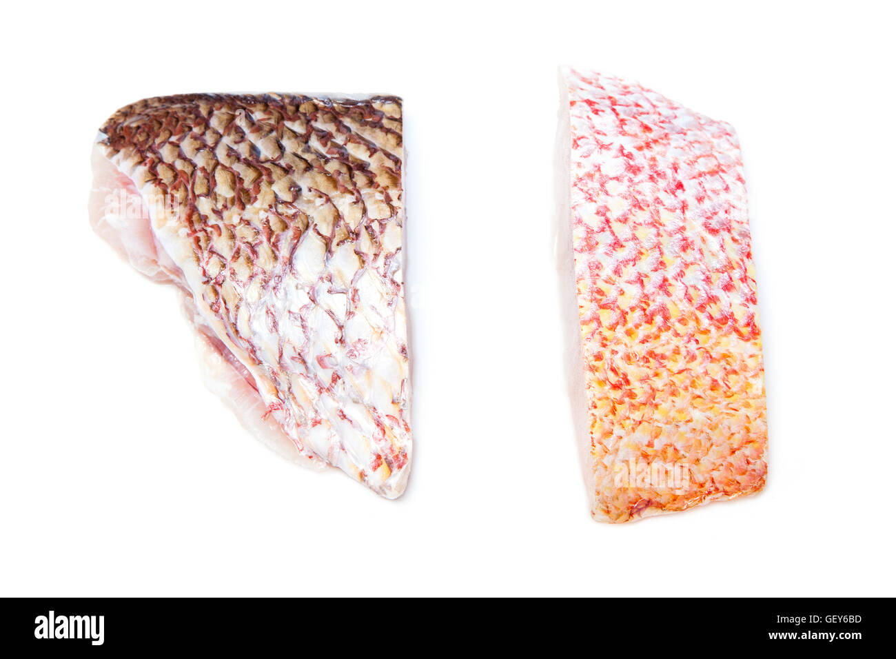 Raw Red Snapper fish fillets isolated on a white studio background. Stock Photo