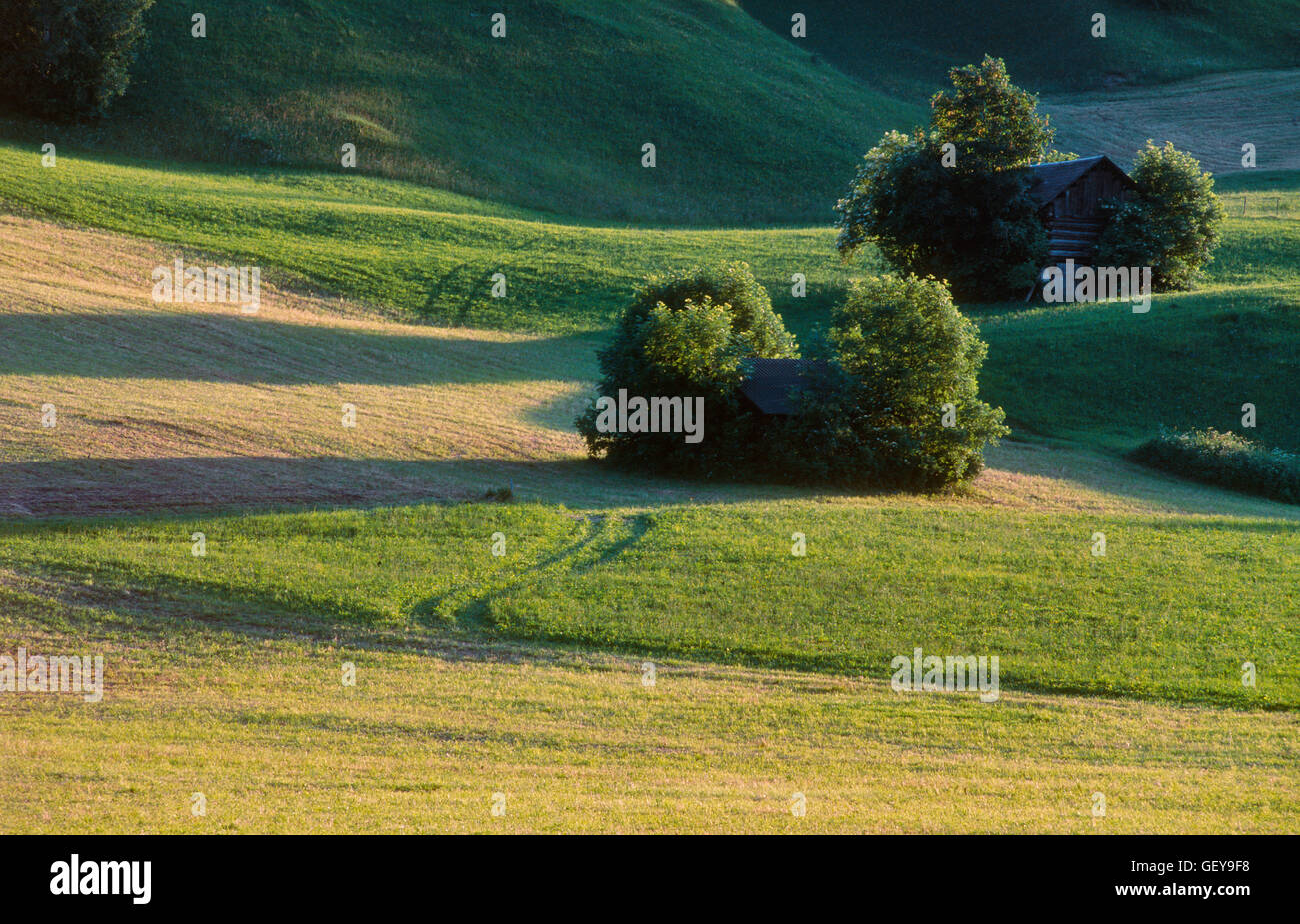 Hay barn, Nenzing Stock Photo