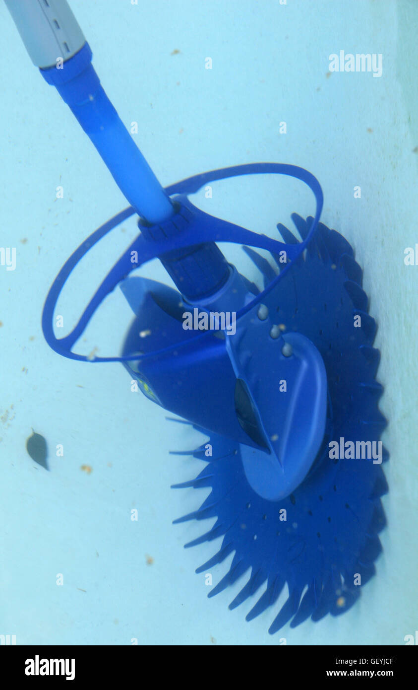 Swimming pool with blue water and a barracuda pool cleaner, side ...