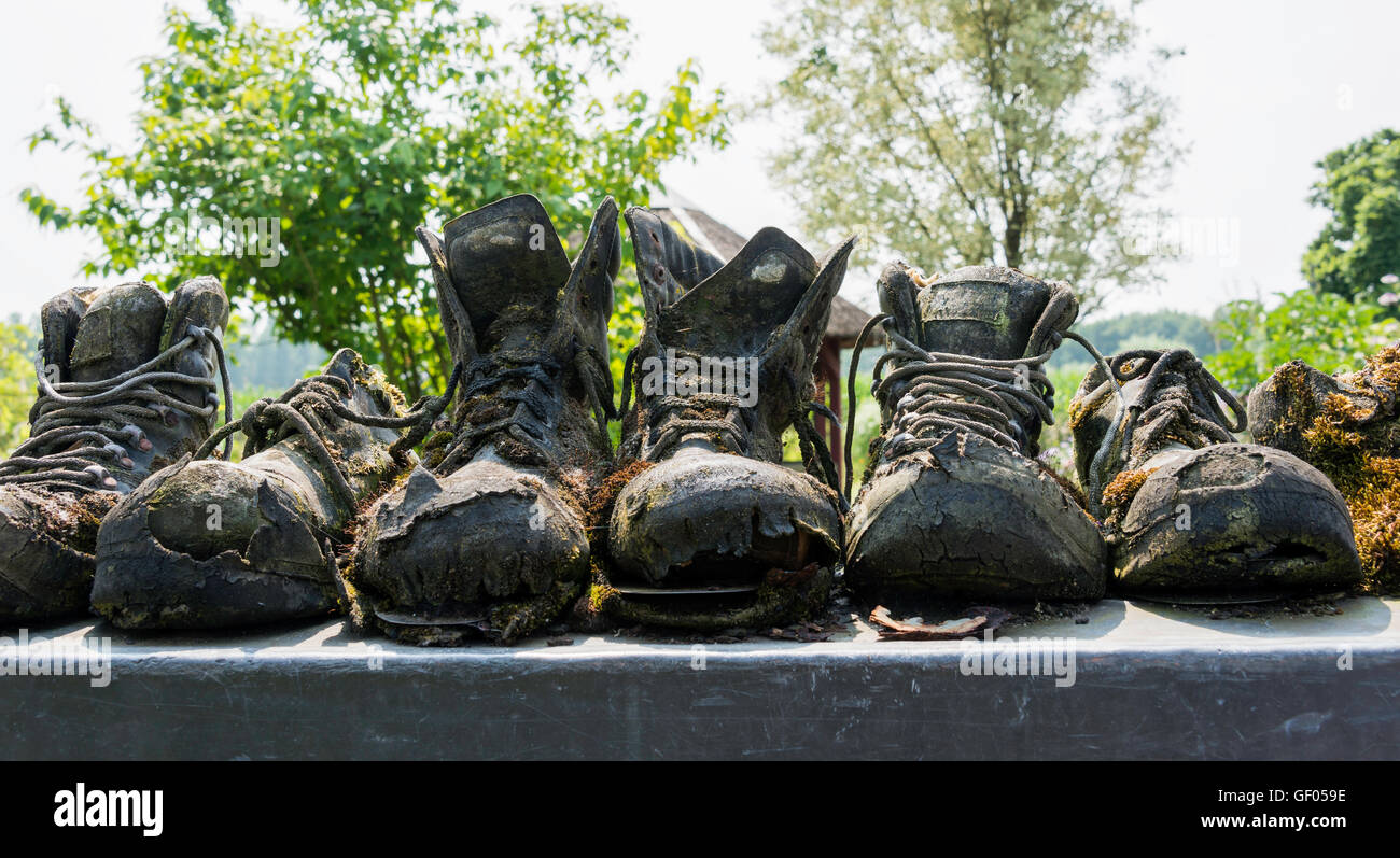 row of old leather worn out shoes in garden - Stock Image