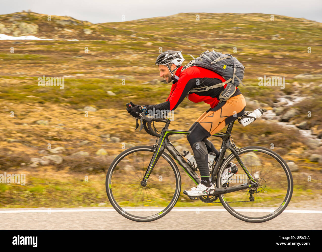 Road cyclist peddling, route 7 Hardangervidda National Park next to Lake Orteren, Norway, Hordaland, Scandinavia, - Stock Image