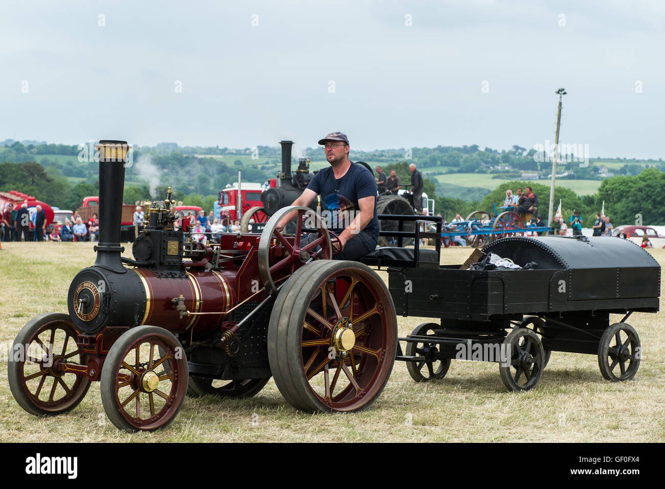 Miniature steam traction engine at Innishannon Steam & Vintage Rally 2016, West Cork, Ireland. - Stock Image
