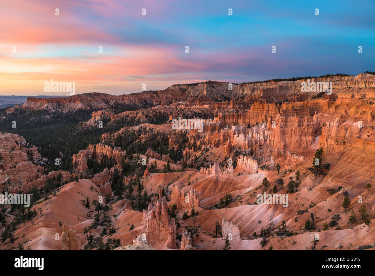 Amphitheater, Bryce Canyon National Park, Utah, USA Stock Photo