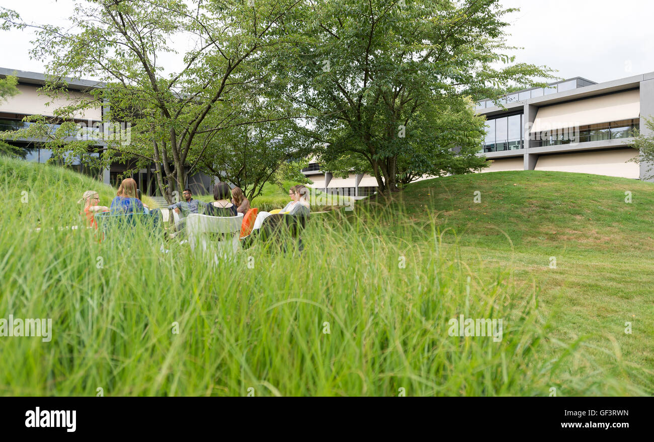 Coesfeld, Germany. 27th July, 2016. Employees having a meeting in the company garden of Ernsting's family in - Stock Image
