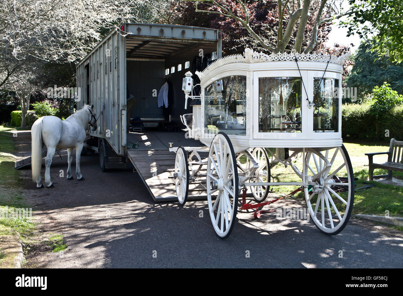 White funeral carriage and horse in cemetery grounds, Southend, Essex. - Stock Image