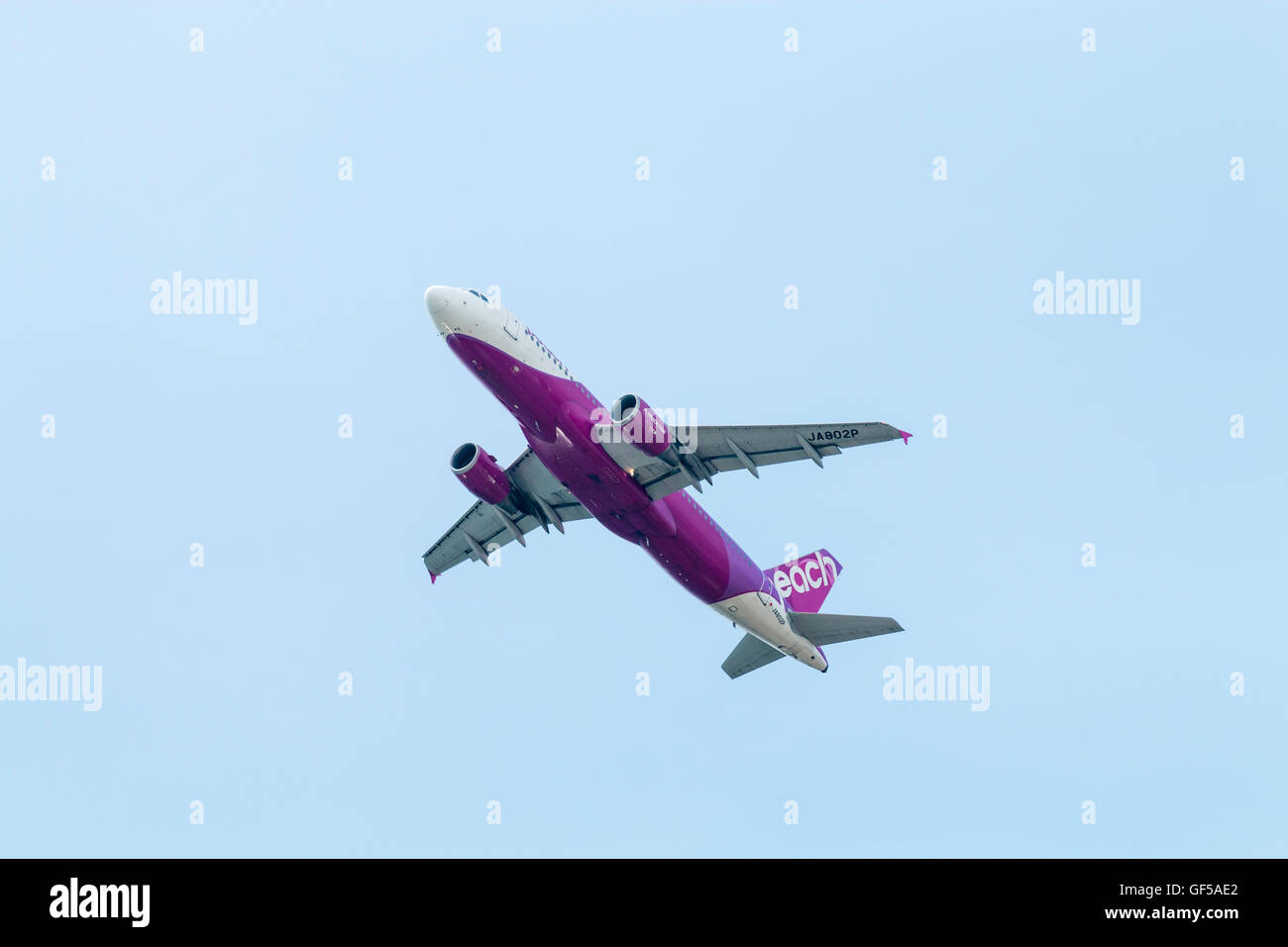 Japan, Kansai airport, KIX. Pearch Airline Airbus A320-200, JA 802P in flight and climbing overhead after take-off. - Stock Image