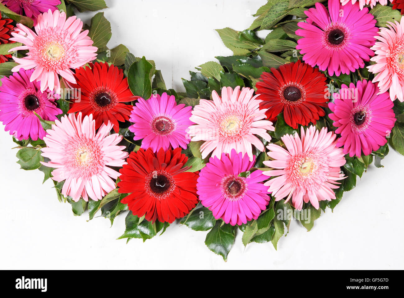 Flower bouquet on white background - Stock Image