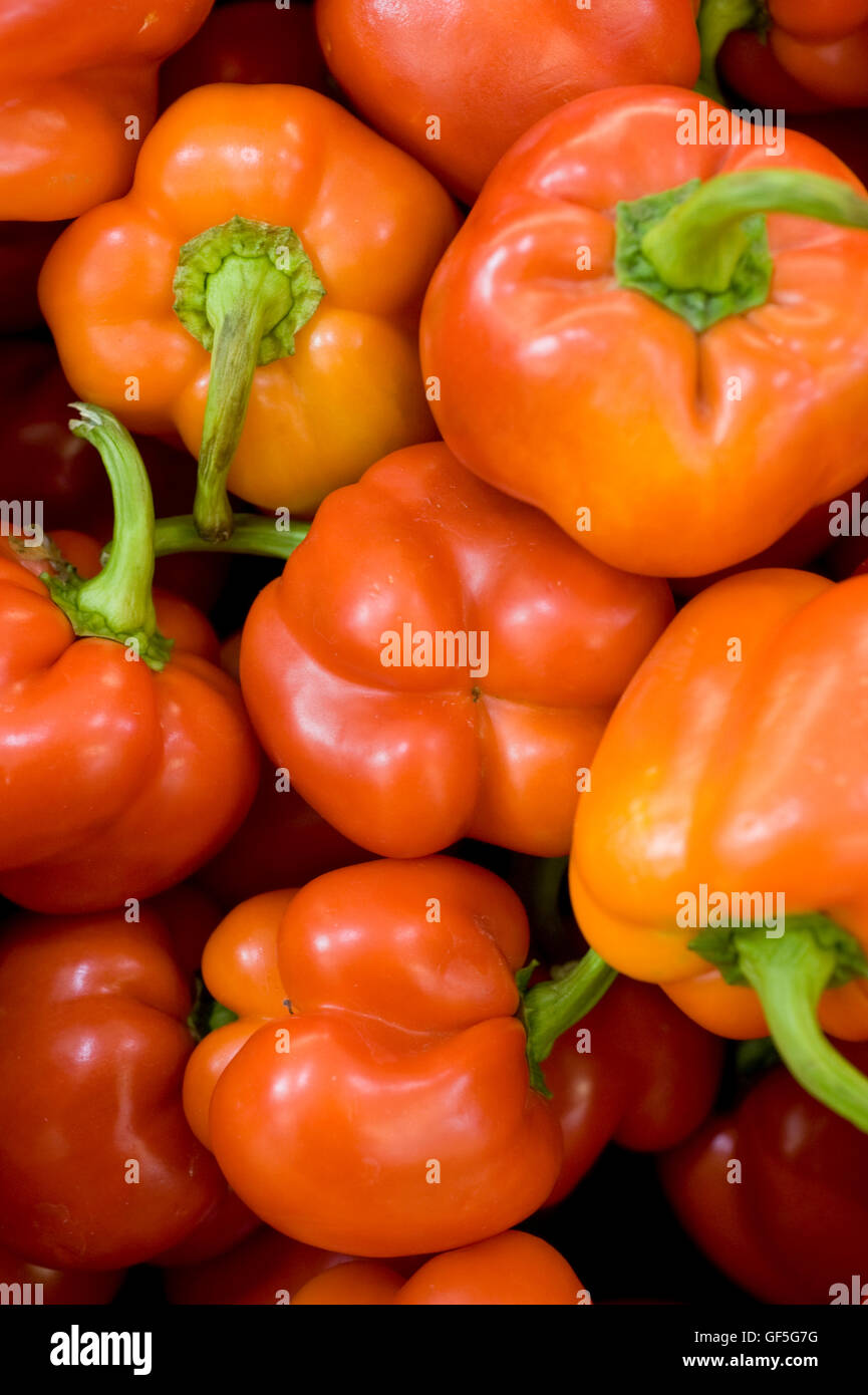 A pile of fresh, ripe red Bell pepper (Capsicum annuum) - Stock Image