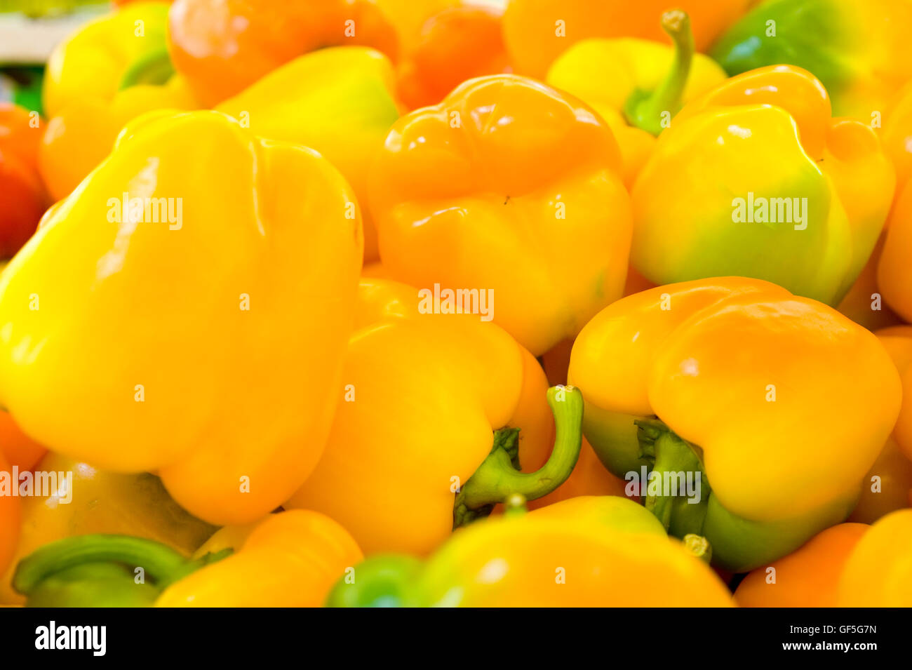 A pile of fresh, ripe yellow Bell peppers (Capsicum annuum) - Stock Image
